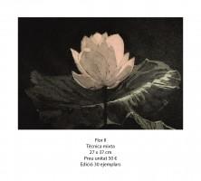 Flor II